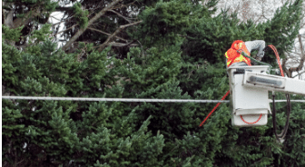 Man in machine trimming trees